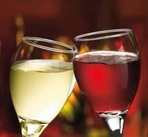 Wine-tasting-dinner
